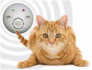dissuasori per gatti