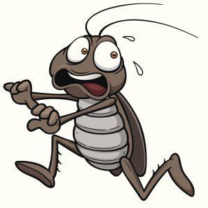 repellente per scarafaggi